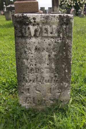 PROCTOR, LOWELL W. - Trumbull County, Ohio   LOWELL W. PROCTOR - Ohio Gravestone Photos
