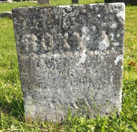 PROCTOR, ROXY - Trumbull County, Ohio | ROXY PROCTOR - Ohio Gravestone Photos
