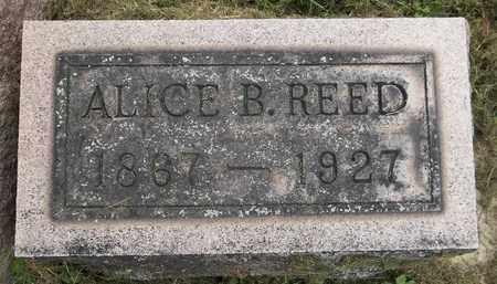 REED, ALICE - Trumbull County, Ohio   ALICE REED - Ohio Gravestone Photos