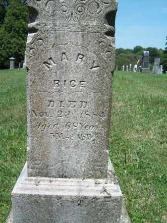 RICE, MARY - Trumbull County, Ohio   MARY RICE - Ohio Gravestone Photos