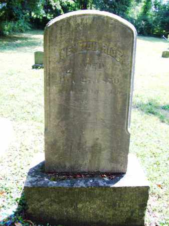 RICE, NEWTON - Trumbull County, Ohio | NEWTON RICE - Ohio Gravestone Photos