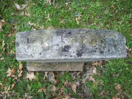 RICE, RHODA - Trumbull County, Ohio | RHODA RICE - Ohio Gravestone Photos