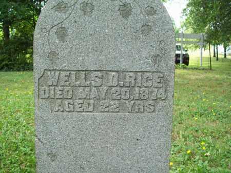RICE, WELLS D. - Trumbull County, Ohio | WELLS D. RICE - Ohio Gravestone Photos