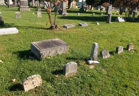 COX RITTER, CLARISSA P. - Trumbull County, Ohio | CLARISSA P. COX RITTER - Ohio Gravestone Photos