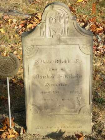 SCOVILLE, SHADRAC B. - Trumbull County, Ohio | SHADRAC B. SCOVILLE - Ohio Gravestone Photos