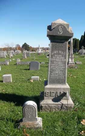 SEALY, ELIZA - Trumbull County, Ohio | ELIZA SEALY - Ohio Gravestone Photos