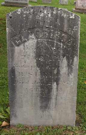 GALPIN SHELDON, CLARRISSA - Trumbull County, Ohio | CLARRISSA GALPIN SHELDON - Ohio Gravestone Photos