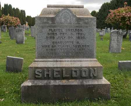 SHELDON, CHARLOTTE - Trumbull County, Ohio   CHARLOTTE SHELDON - Ohio Gravestone Photos