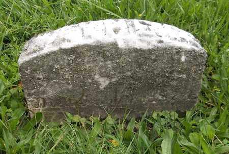 SPERRY, WAYNE - Trumbull County, Ohio | WAYNE SPERRY - Ohio Gravestone Photos