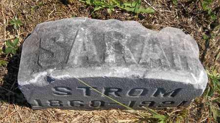 STROM, SARAH - Trumbull County, Ohio | SARAH STROM - Ohio Gravestone Photos