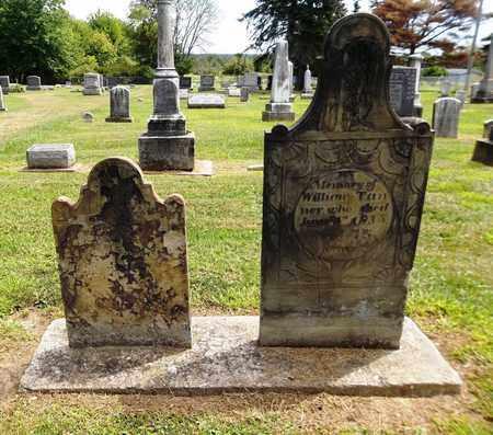 TANNER, WILLIAM - Trumbull County, Ohio   WILLIAM TANNER - Ohio Gravestone Photos