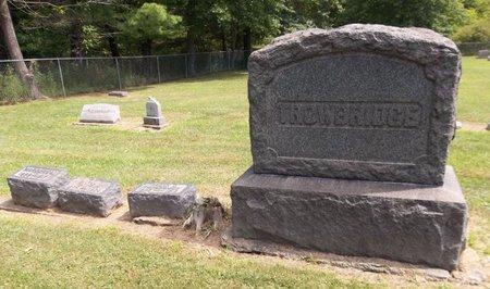TROWBRIDGE, MYRA C. - Trumbull County, Ohio | MYRA C. TROWBRIDGE - Ohio Gravestone Photos
