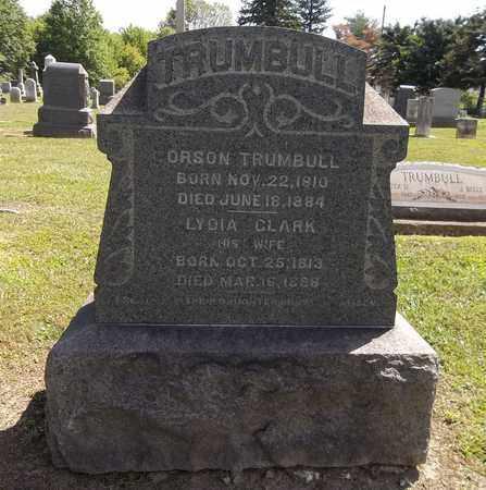 TRUMBULL, LYDIA - Trumbull County, Ohio | LYDIA TRUMBULL - Ohio Gravestone Photos