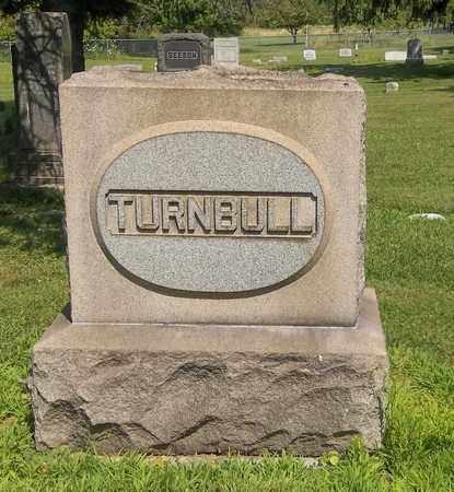 HENDERSON TURNBULL, AMELIA - Trumbull County, Ohio | AMELIA HENDERSON TURNBULL - Ohio Gravestone Photos