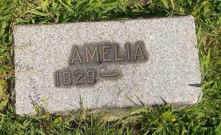 TURNBULL, AMELIA - Trumbull County, Ohio | AMELIA TURNBULL - Ohio Gravestone Photos