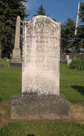 BALDWIN VAUGHN, LOVINA - Trumbull County, Ohio | LOVINA BALDWIN VAUGHN - Ohio Gravestone Photos