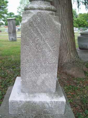 VIETS, ALGIE BURT - Trumbull County, Ohio   ALGIE BURT VIETS - Ohio Gravestone Photos