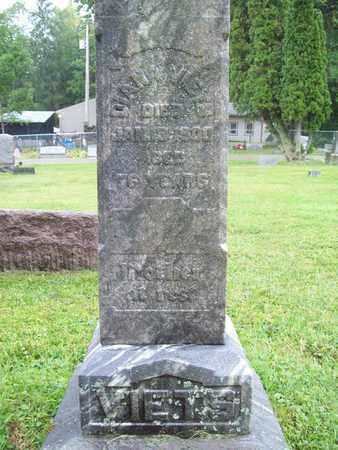 VIETS, DIANA - Trumbull County, Ohio | DIANA VIETS - Ohio Gravestone Photos