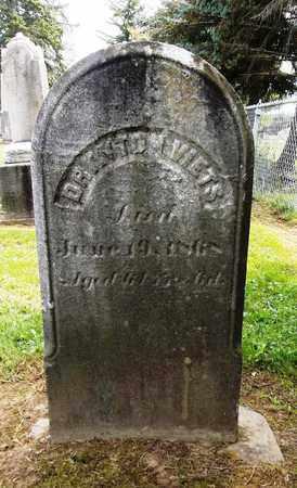 VIETS, DRAYTON - Trumbull County, Ohio | DRAYTON VIETS - Ohio Gravestone Photos