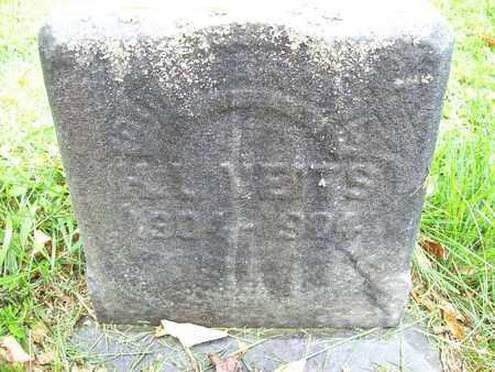 VIETS, HENRY LEWIS - Trumbull County, Ohio | HENRY LEWIS VIETS - Ohio Gravestone Photos
