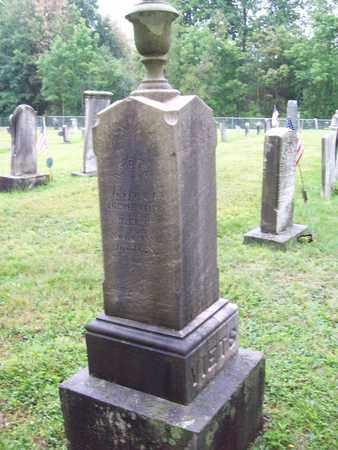 VIETS, LYDIA - Trumbull County, Ohio | LYDIA VIETS - Ohio Gravestone Photos