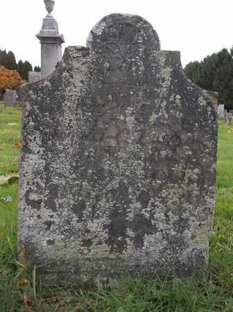 WARNER, FREDERICK FALL - Trumbull County, Ohio | FREDERICK FALL WARNER - Ohio Gravestone Photos