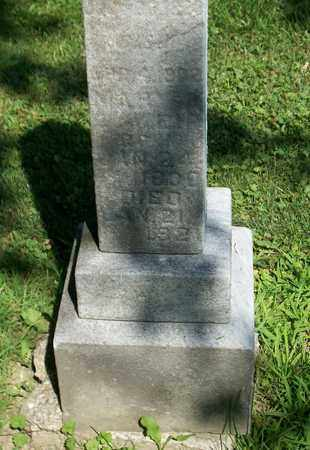 STONE WEIR, MARY - Trumbull County, Ohio | MARY STONE WEIR - Ohio Gravestone Photos