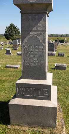WHITE, CURTIS S. - Trumbull County, Ohio | CURTIS S. WHITE - Ohio Gravestone Photos
