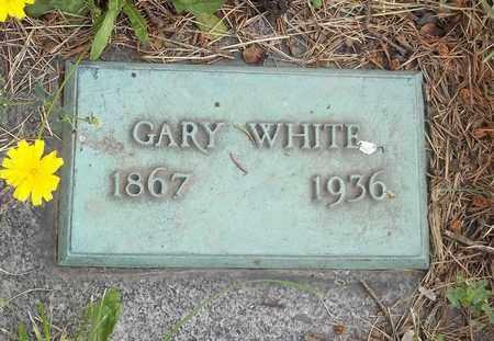 WHITE, GARY - Trumbull County, Ohio | GARY WHITE - Ohio Gravestone Photos