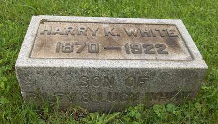 WHITE, HARRY K. - Trumbull County, Ohio   HARRY K. WHITE - Ohio Gravestone Photos