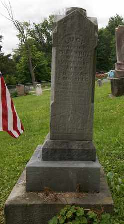 WHITE, LUCY - Trumbull County, Ohio | LUCY WHITE - Ohio Gravestone Photos