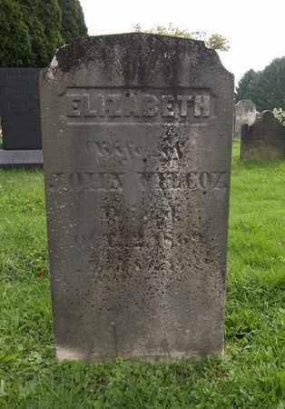 WILCOX, ELIZABETH - Trumbull County, Ohio | ELIZABETH WILCOX - Ohio Gravestone Photos