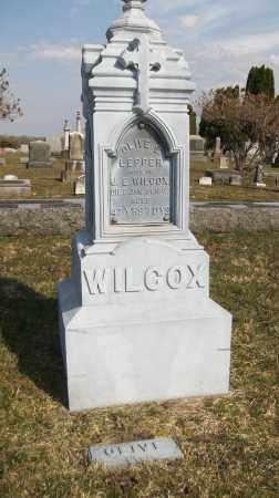 WILCOX, OLIVE S. - Trumbull County, Ohio | OLIVE S. WILCOX - Ohio Gravestone Photos