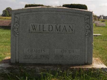 WILDMAN, CHARLES - Trumbull County, Ohio   CHARLES WILDMAN - Ohio Gravestone Photos