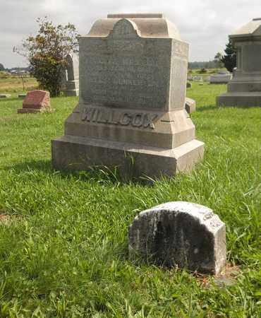 WILLCOX, HOPKINS JOSIAH - Trumbull County, Ohio   HOPKINS JOSIAH WILLCOX - Ohio Gravestone Photos