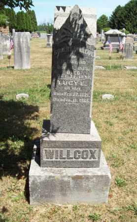 EASTON WILLCOX, LUCY - Trumbull County, Ohio | LUCY EASTON WILLCOX - Ohio Gravestone Photos