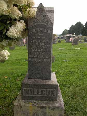 WILLCOX, LUCY - Trumbull County, Ohio | LUCY WILLCOX - Ohio Gravestone Photos