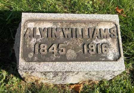 WILLIAMS, ALVIN - Trumbull County, Ohio | ALVIN WILLIAMS - Ohio Gravestone Photos