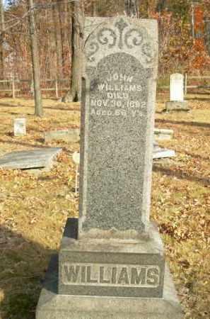 WILLIAMS, JOHN - Trumbull County, Ohio | JOHN WILLIAMS - Ohio Gravestone Photos