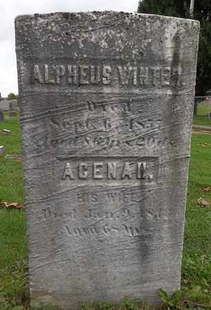 WINTER, ACENAH - Trumbull County, Ohio | ACENAH WINTER - Ohio Gravestone Photos