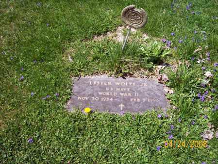 WOLFE, LESTER - Trumbull County, Ohio | LESTER WOLFE - Ohio Gravestone Photos