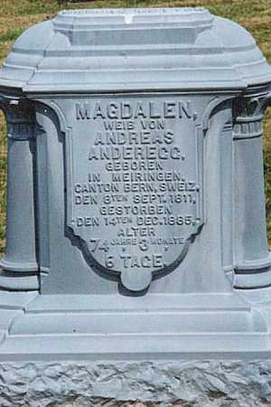 ANDEREGG, MAGDALEN - Tuscarawas County, Ohio | MAGDALEN ANDEREGG - Ohio Gravestone Photos