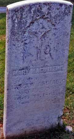 ANDEREGG, MARY - Tuscarawas County, Ohio | MARY ANDEREGG - Ohio Gravestone Photos