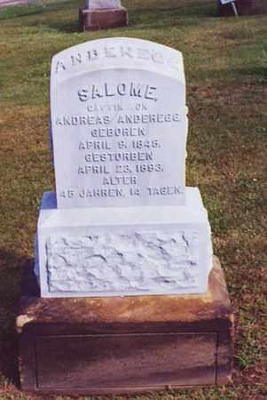 WYLER ANDEREGG, SALOME - Tuscarawas County, Ohio   SALOME WYLER ANDEREGG - Ohio Gravestone Photos