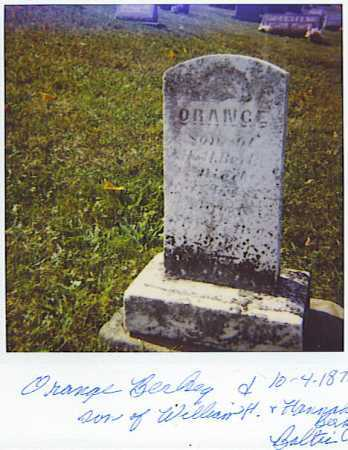BERKEY, ORANGE - Tuscarawas County, Ohio | ORANGE BERKEY - Ohio Gravestone Photos