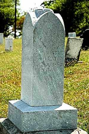 CHRISTMAN BIDDLE, LYDIA - Tuscarawas County, Ohio | LYDIA CHRISTMAN BIDDLE - Ohio Gravestone Photos