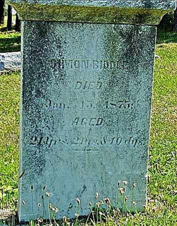 BIDDLE, SIMON - Tuscarawas County, Ohio | SIMON BIDDLE - Ohio Gravestone Photos