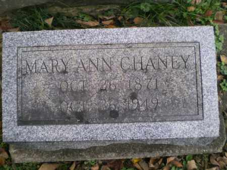 WILSON CHANEY, MARY ANN - Tuscarawas County, Ohio | MARY ANN WILSON CHANEY - Ohio Gravestone Photos