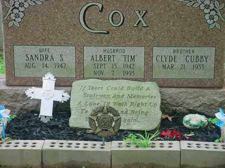 COX, ALBERT - Tuscarawas County, Ohio | ALBERT COX - Ohio Gravestone Photos