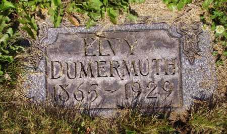 DUMERMUTH, ELVY - Tuscarawas County, Ohio | ELVY DUMERMUTH - Ohio Gravestone Photos